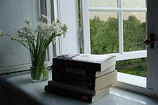 Bøger i vindueskarm med ramsløg