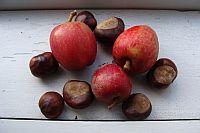 Kastanjer og æbler