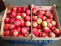 Æbler i kasser