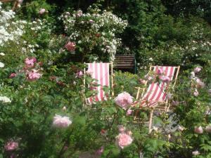 Liggestole i rosenhave